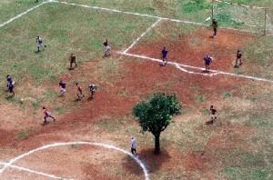 Primeira partida de futebol com presença de uma árvore no centro do gramado foi disputada na tarde desta quarta-feira (25), em Estocolmo, na Suécia