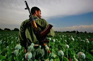 """Guerra e Paz: soldado caminha em """" mar de rosas"""" de volta pra casa"""