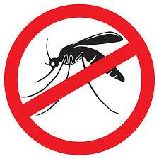 A mobilização contra o mosquito acontecerá em  prédios públicos federais e de empresas estatais em todo o país