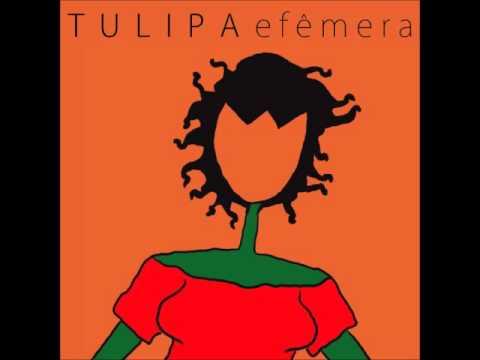 tulipa-2