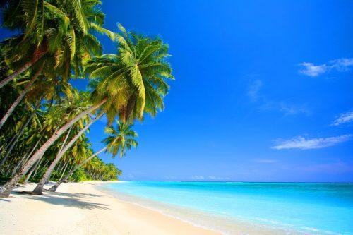 painel-lona-fosca-paisagem-praia-coqueiro-200x15-48hs-D_NQ_NP_968725-MLB25485798952_042017-F